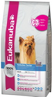 eukanuba yorkshire terrier 27 1 jpg 800x600 q100